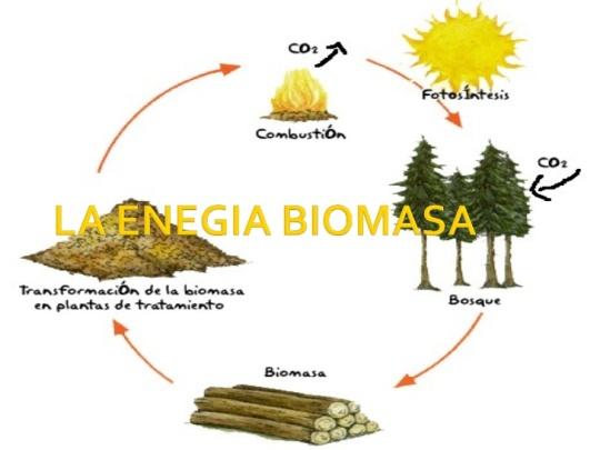 la-energia-biomasa